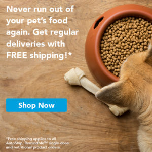 Pet Food Delivery - Free Shipping - All for Paws Animal Clinic
