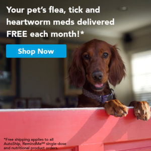 Pet Flea Tick & Heartwork Meds - Free Delivery - All for Paws Animal Clinic